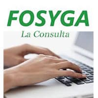 Cómo Realizar La Consulta Fosyga