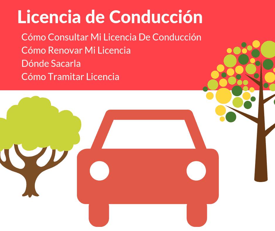 Cómo Tramitar una Licencia de conducción
